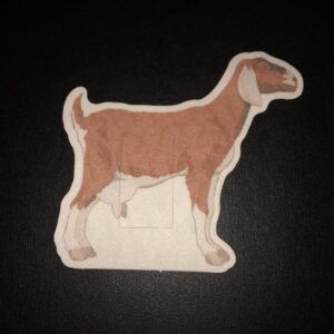Goat Designed precut adhesive patch to secure all diabetic devices